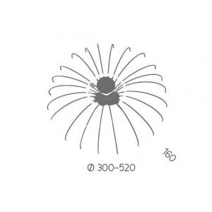 Spider AP - Aromas