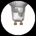 GU10 halogen bulbs. Bulbs pair